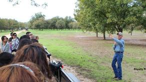 Influencer Pecan Orchard Tour