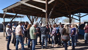 Illinois Farm Bureau Tour of Pecan Orchards