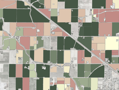 Land IQ – Pecan Acres Mapped