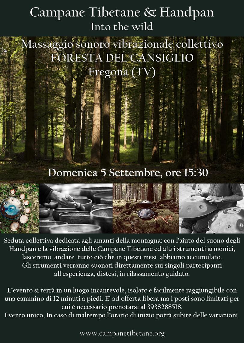 Foresta del Cansiglio - 5 settembre 2021
