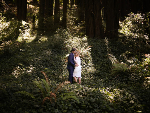 stolte grove, mill valley mini wedding