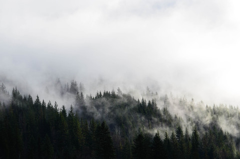 sunny clouds-3.jpg