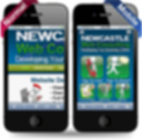 Newcastle Web Consulting