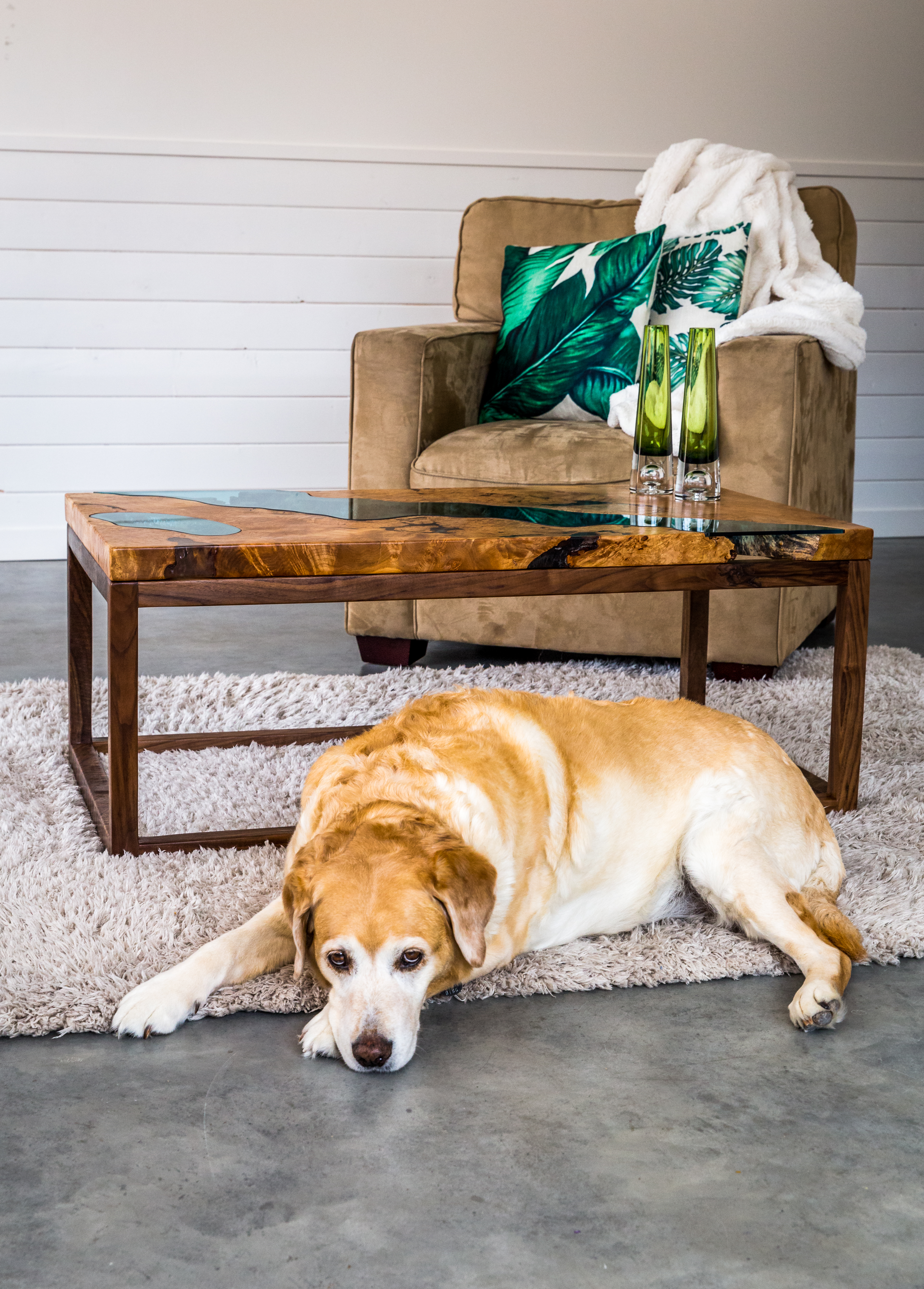 River Coffee Table Doggy.jpg