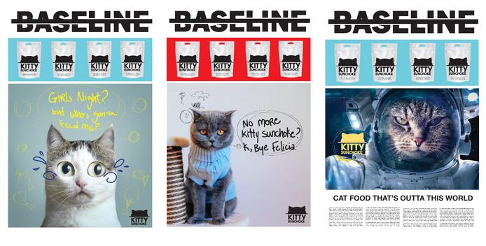 Baseline Ad Campaign