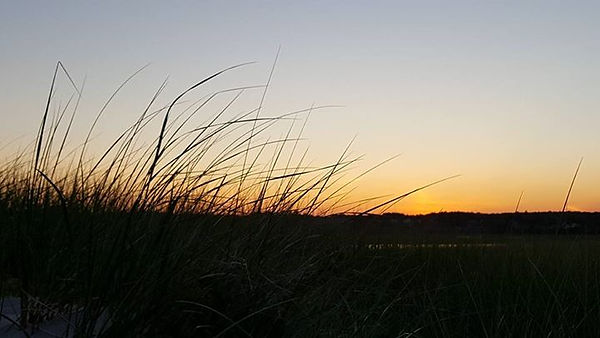 beautiful night Drakes Island, Maine wal