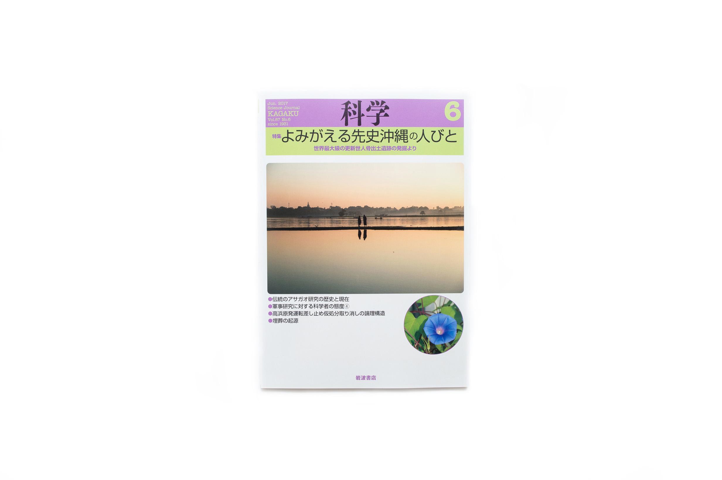 岩波書店・雑誌『科学』2017年6月号の表紙を担当