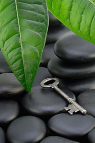 sage, saging space, new england psychic, home spirit energy, clear energy of business, new business, moving, spiritual counseling home, spiritual energy cleansing, prosperity business, money, health, love, positive spacial clearing, fung shui