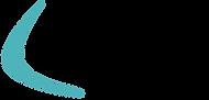 Boomerang-Logo-Teal.png