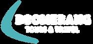 Boomerang-Logo-Teal-White.png