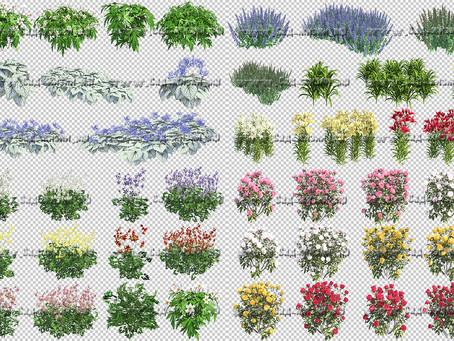 Быстрый способ создания красивой визуализации цветника.