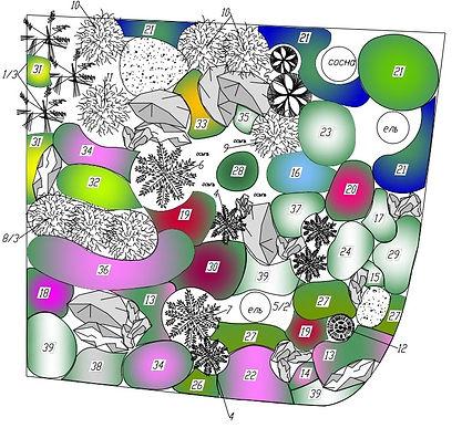 План посадок растений в рокарии