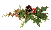 png-clipart-christmas-decoration-leaf-photography-removebg-preview.png