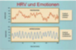 Abbildung_HRV+Emotionen.jpg