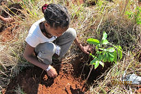 LEEP 2012 - Antsiranana - Reforestation - Hope For Madagascar