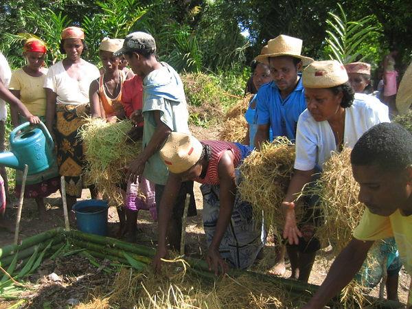 Perma Gardening in Ambalona - Hope For Madagascar