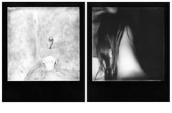 Géographie Intérieure - Polaroid 600
