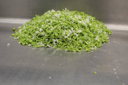 Desforre verde con papel