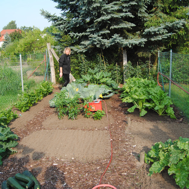 DSC_0062_083Haus Garten 14.JPG