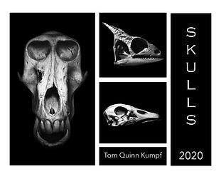 Skulls Calendar 2020 Cover.jpg