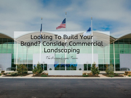 Looking To Build Your Brand? Consider Commercial Landscaping