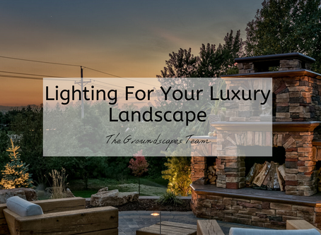 Lighting For Your Luxury Landscape