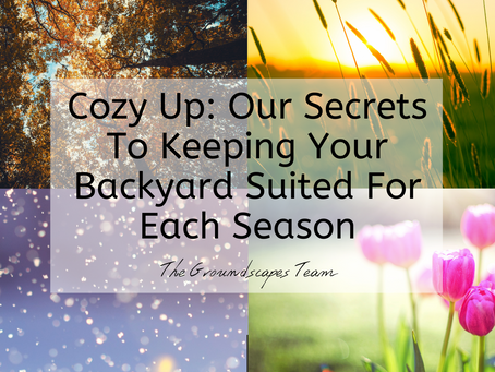 Cozy Up: Our Secrets To Keeping Your Backyard Suited For Each Season