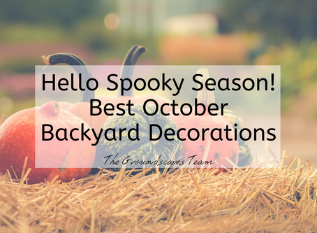 Hello Spooky Season! Best October Backyard Decorations