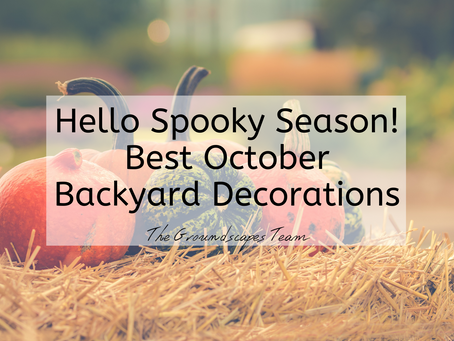 Hello Spooky Season! Best October Backyard Decorations