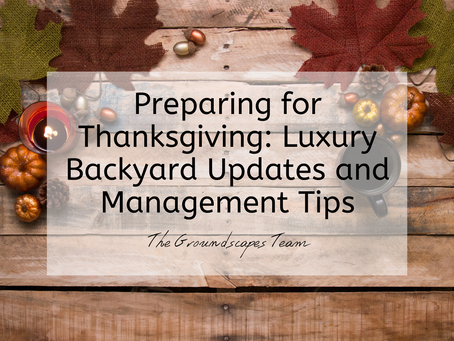 Preparing for Thanksgiving: Luxury Backyard Updates and Management Tips