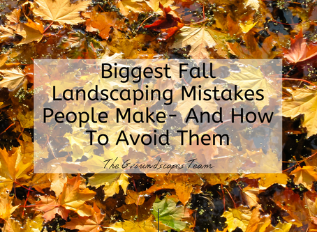 Biggest Fall Landscaping Mistakes People Make- And How To Avoid Them