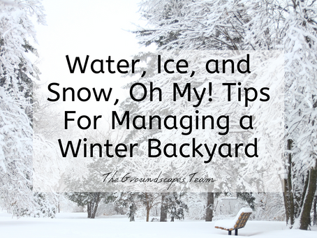 Water, Ice, and Snow, Oh My! Tips For Managing a Winter Backyard