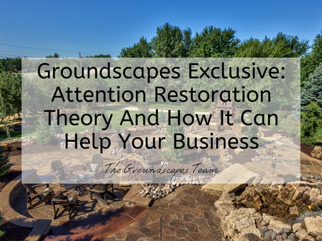 Groundscapes Exclusive: Attention Restoration Theory And How It Can Help Your Business