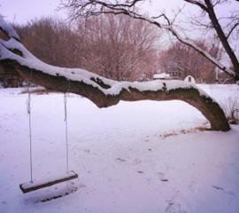 winter-2015.jpg