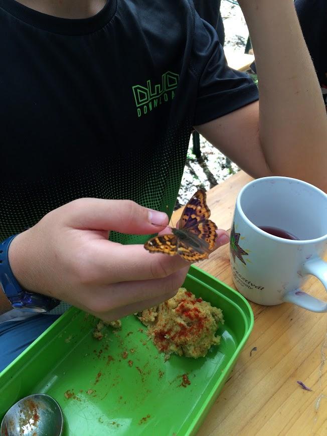 ebédelők.JPG
