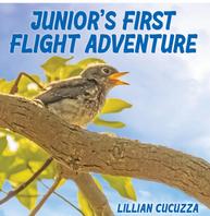 Junior's First Flight Adventure
