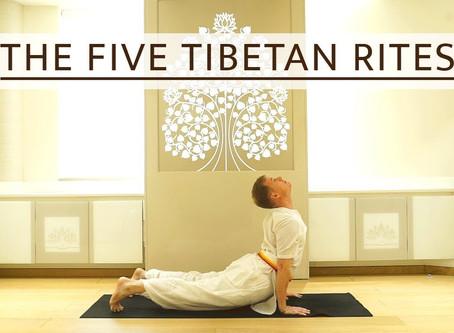 "Derfor skal du straks gå i gang med ""De 5 Tibetanere""."