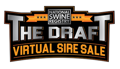 The Draft logo-01.png