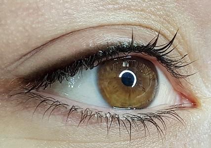 Shadow_lash_maquillage_yeux_bordeaux