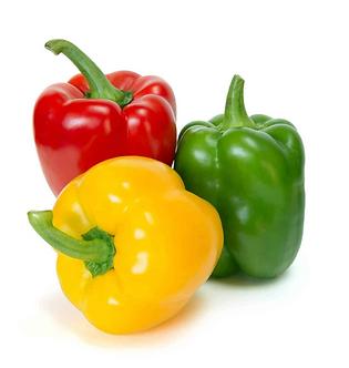 Bell Pepper (Shimla Mirch) - 3 colors