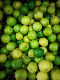 Indian Lemon 1PC
