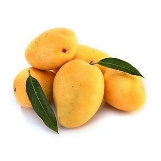 Alphonso Mango 1PC