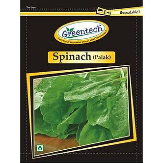 Frozen Spinach (Palak) Greentech
