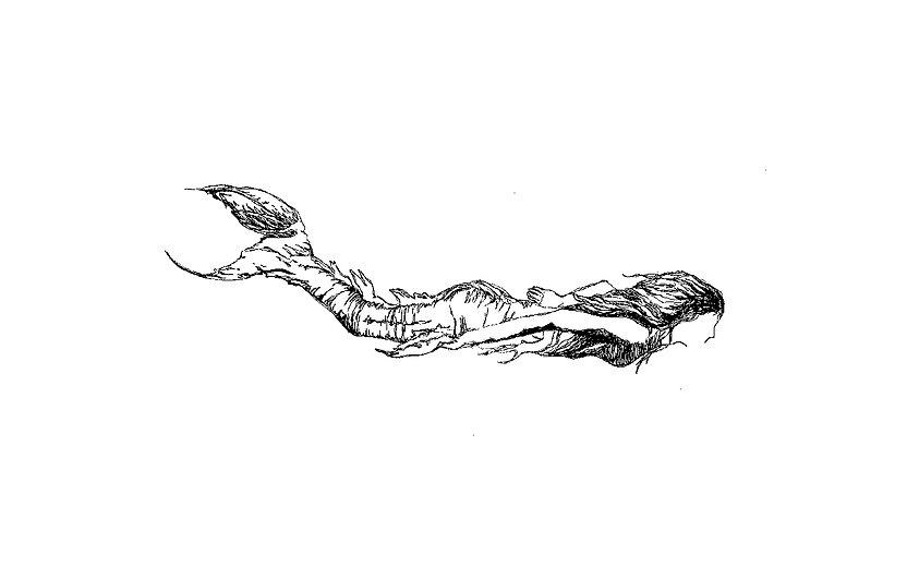 PenCooras Design Mermaid