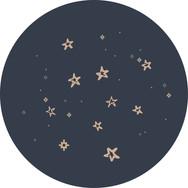Bliss&Stars_Icon-09.jpg