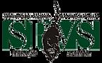 logo-spvs_alta-resolucao1.png