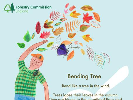 8 Bending Tree.jpg
