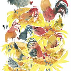 vivai chickens.jpg