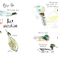 bird spotting.jpg