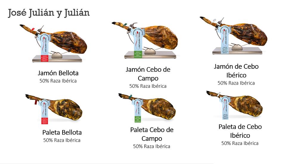 Jose julian y julian 2.PNG